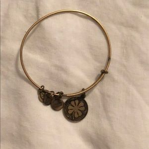 Authentic Alex and Ani bangle charm